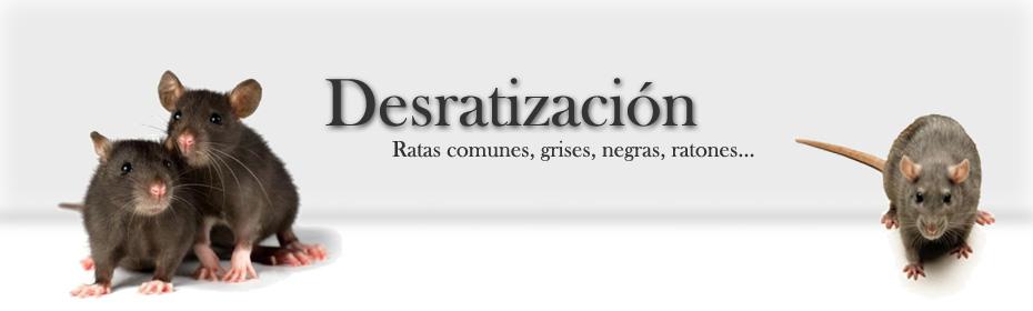 Desratización IBE TOTAL